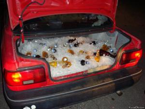 Lednice v autě