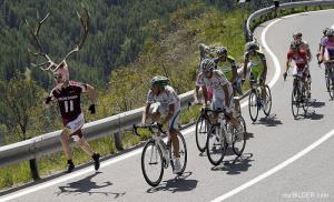 Paroháč vs. Tour de France
