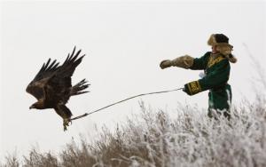 Venčení orla