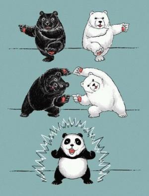 Jak vzniká panda
