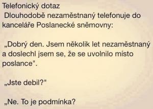 Telefonický dotaz