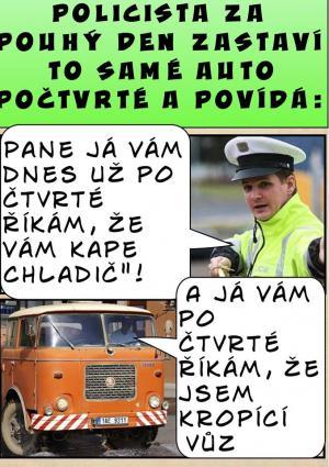Chytrý policajt