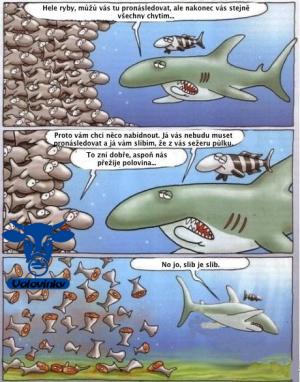 Vychytralý žralok