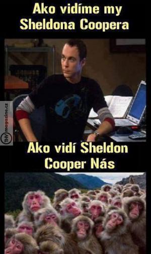 Pravda o Sheldonovi