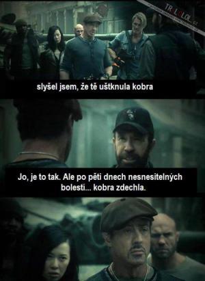 Kobra vs. Chuck