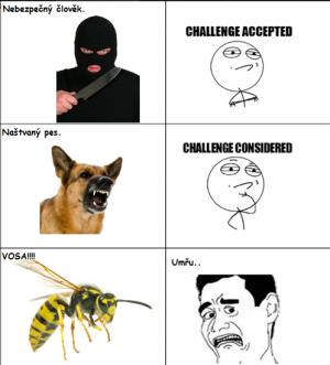 Lidský strach