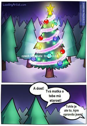 Pravda o vánočním stromku