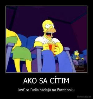 Hádka na facebooku