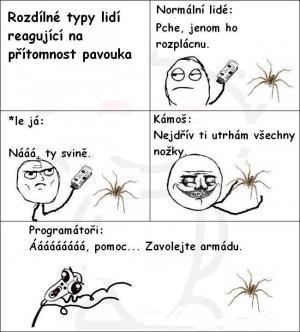 Lidi a pavouk
