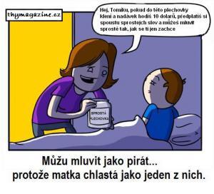 Plechovka