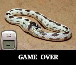 Konec hry