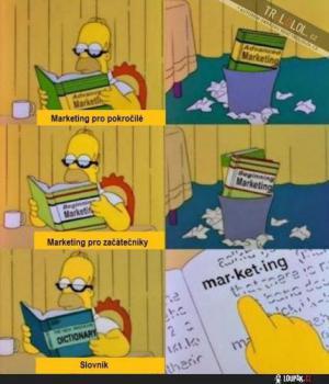 Homer studuje