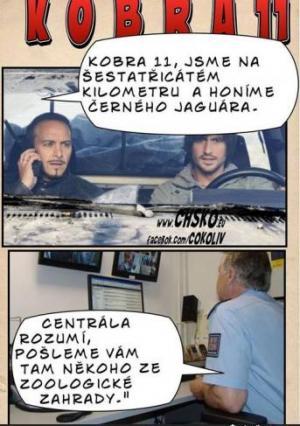 Česká Kobra 11
