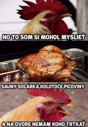 Sauny, solárka:D
