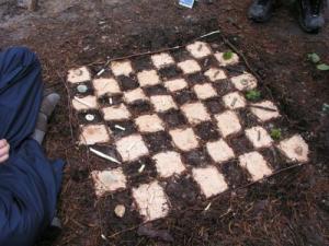 Lesní šachy