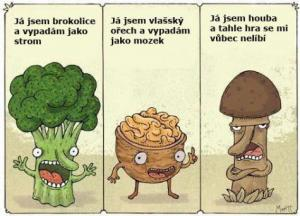 Brokolice,Ořech a Houba