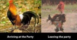 Příchod na párty a její opouštění