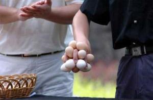 Vajíčkodržec