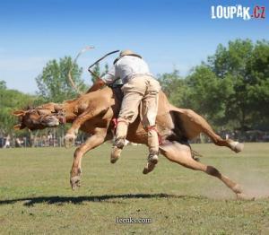 Tak takhle se jezdí na koni... :D