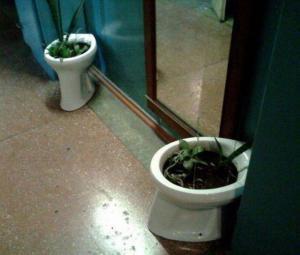Záchodový květináč
