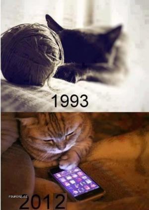 Kočky se mění