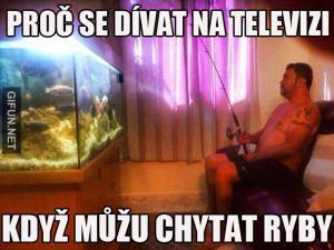 Televize vs. ryby