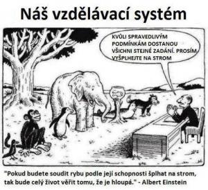 Náš vzdělávací systém