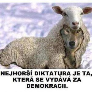 Demokracie