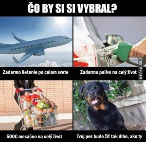 Co by sis vybral ty?
