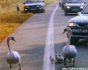 Rodinka na výletě
