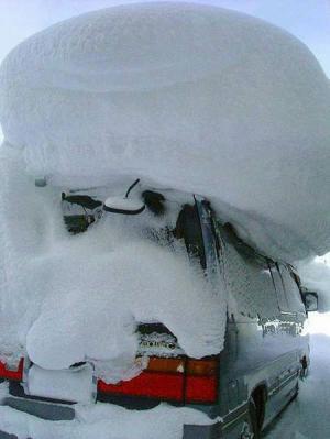 Sněhový čepec