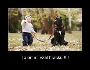 Dítě a pes