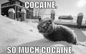 Cocaine power!