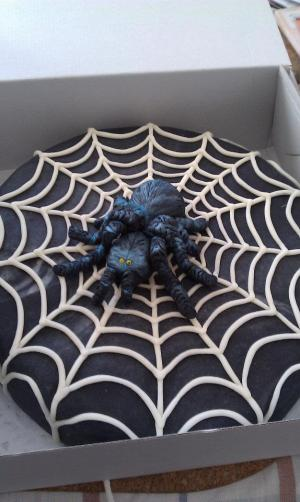 Dort pavouk v síti