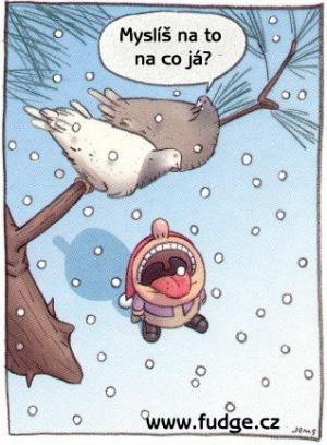 Sněžííí