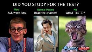 Před testem :)