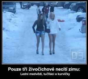 Když je zima