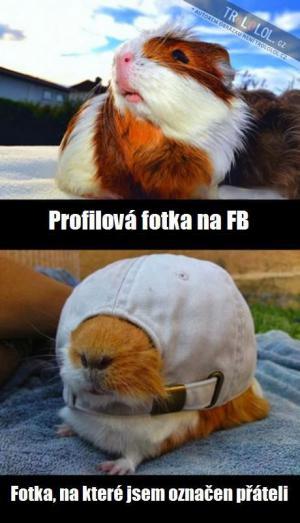 fotky na fb