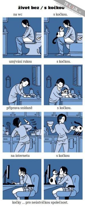 Život s kočkou