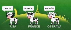 Řeč krav
