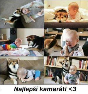 Nejlepší kamarád