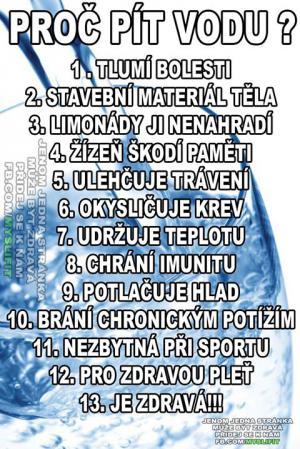 13 důvodů