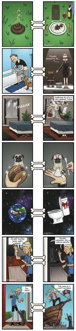 Věci z psího pohledu
