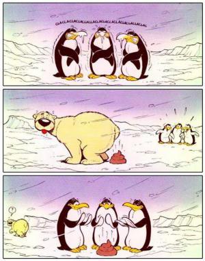 Tučňáci a lední medvěd