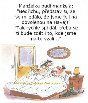 Manželka