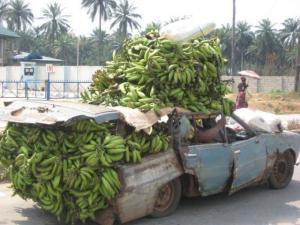 Přeprava banánů