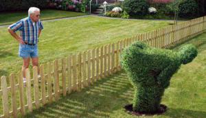 Vášnivý zahradník