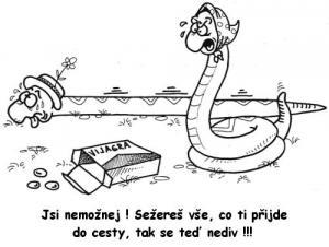 Hadí problém