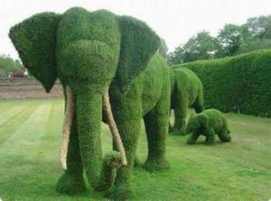 Šikovný zahradník