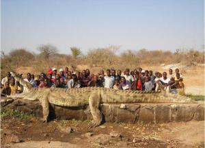 Maxi krokodýl